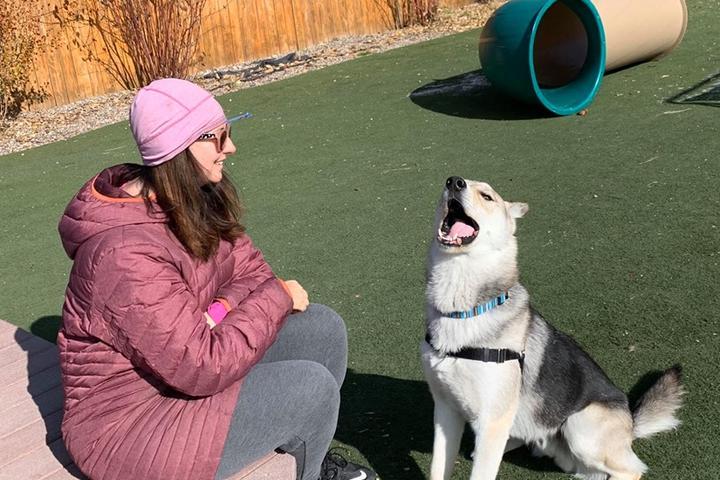 Pet Friendly Jackson/Teton County Animal Shelter