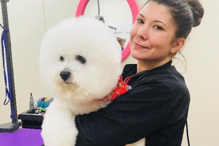 Pet Friendly Rub-a-Dub Dog Bathhouse & Spa