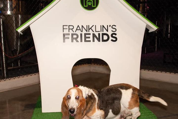 Pet Friendly Franklin's Friends