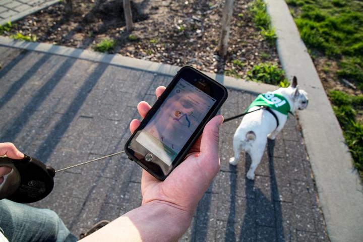 Pet Friendly St. Louis's Gateway to the West Scavenger Hunt Tour