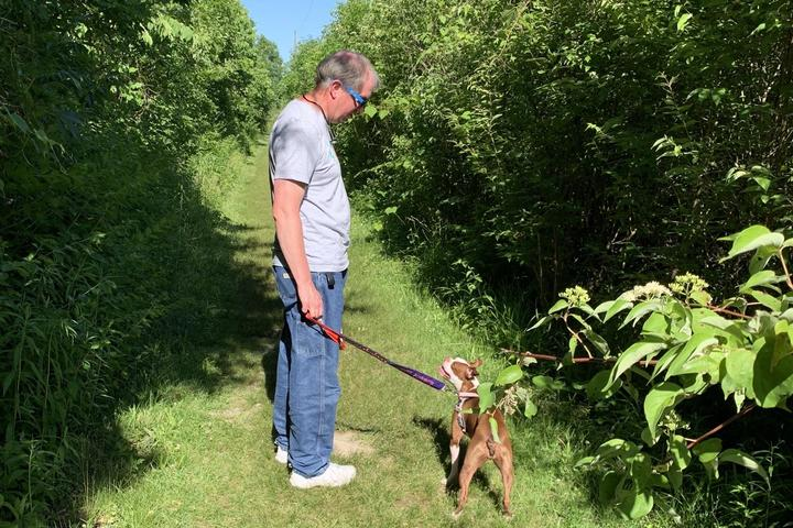 Pet Friendly Ritchey Woods Nature Preserve