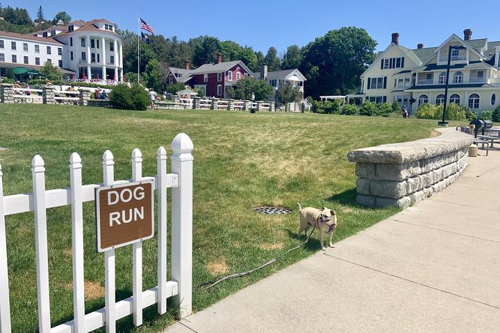 Pet Friendly Dog Run at Mackinac Island State Harbor
