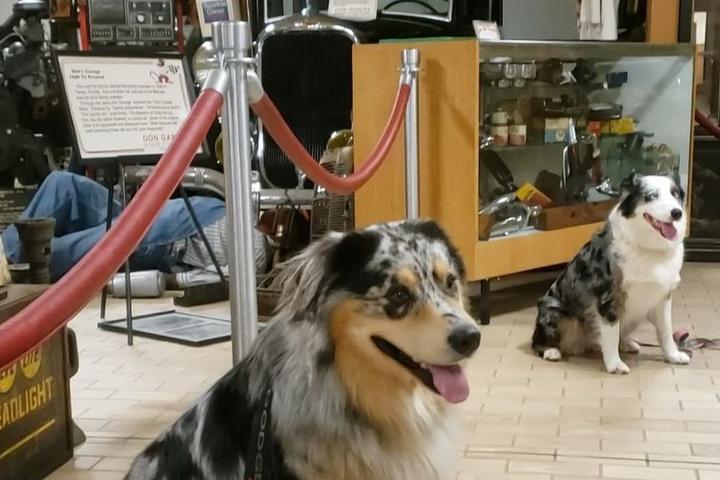 Pet Friendly Don Garlits Museum of Drag Racing