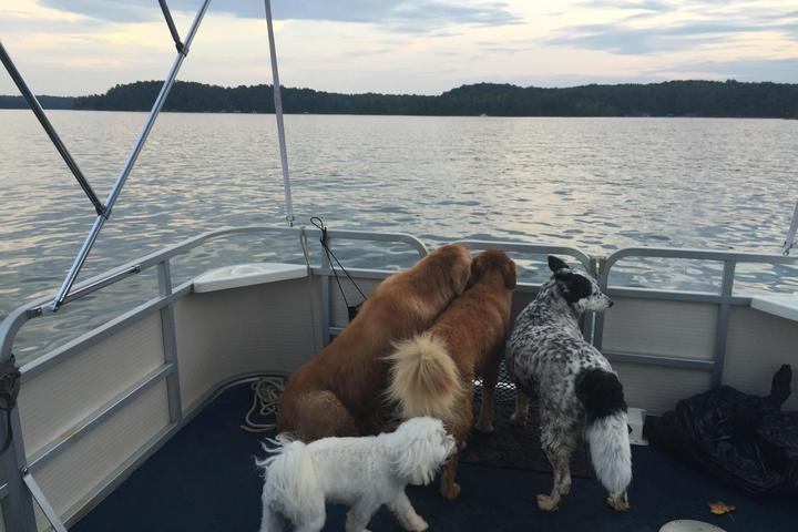 Pet Friendly Best Friends on the Lake