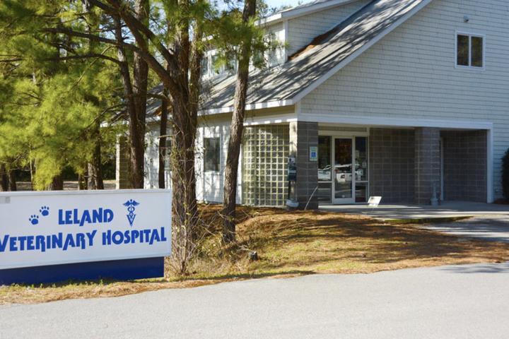 Pet Friendly Leland Veterinary Hospital