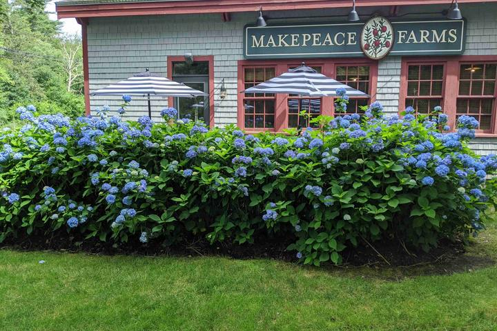 Pet Friendly Makepeace Farms