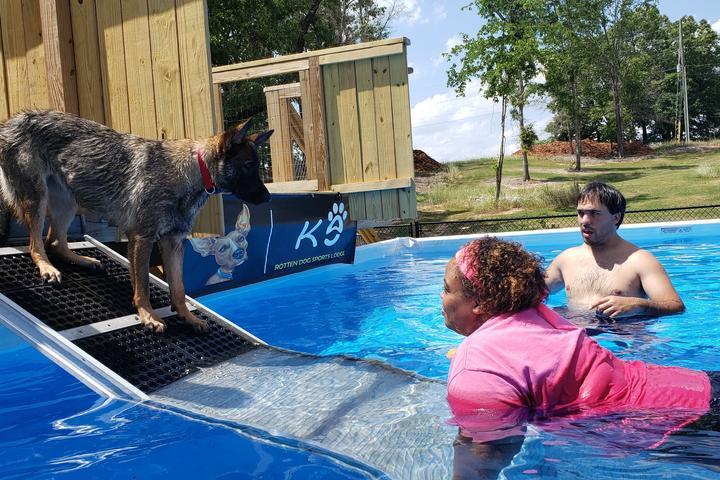 Pet Friendly Rotten Dog Sports Lodge