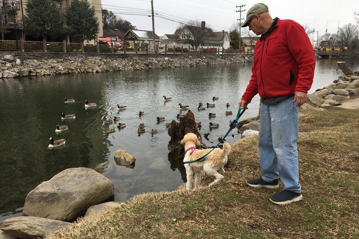 Pet Friendly Patriot Park