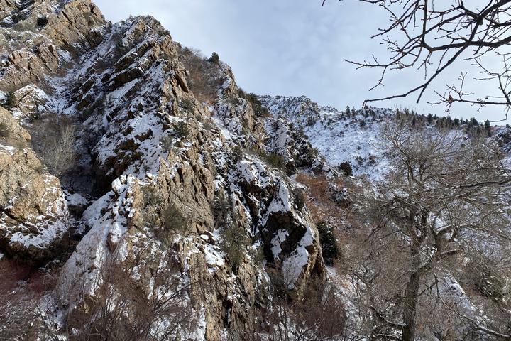 Pet Friendly Heughs Canyon Trail