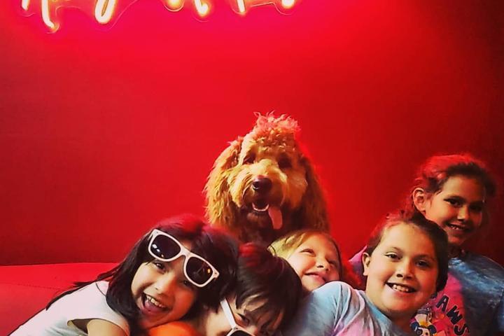 Pet Friendly Cool Shots Selfie Museum
