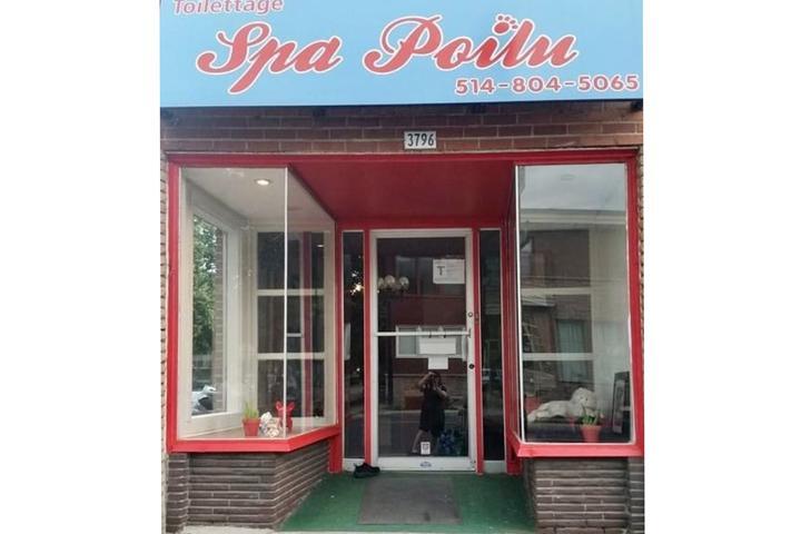 Pet Friendly Toilettage Spa Poilu