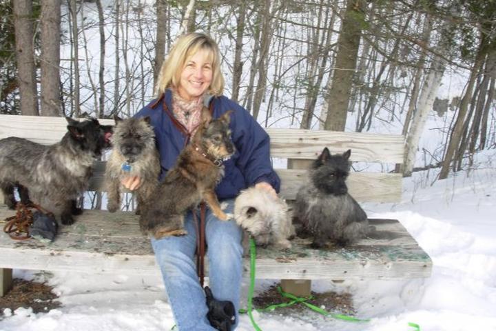 Pet Friendly Dog Logic With Barbara