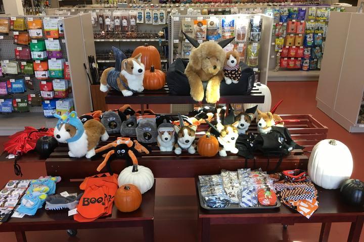 Pet Friendly Pet Pantry Warehouse