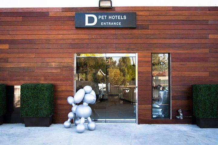 Pet Friendly  D Pet Hotels Los Angeles