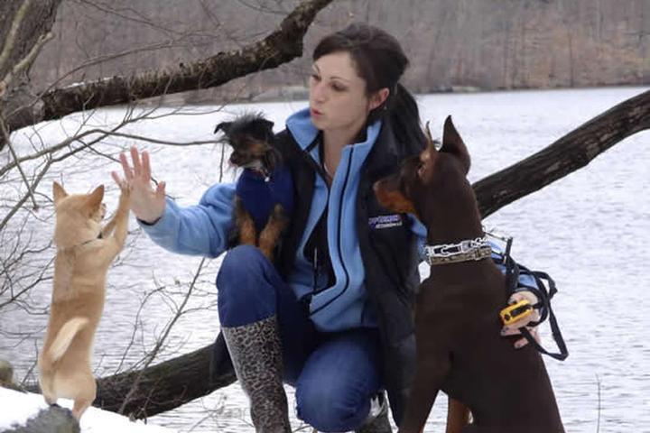 Pet Friendly Off-Leash K9 Training