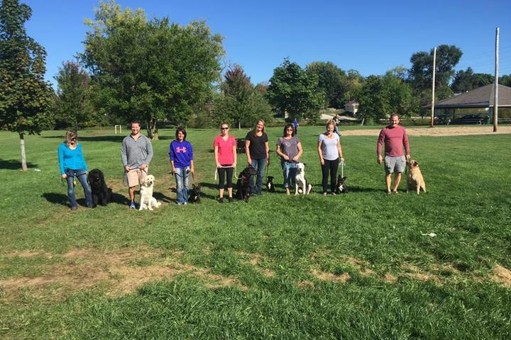 Pet Friendly Einstein Dog Training