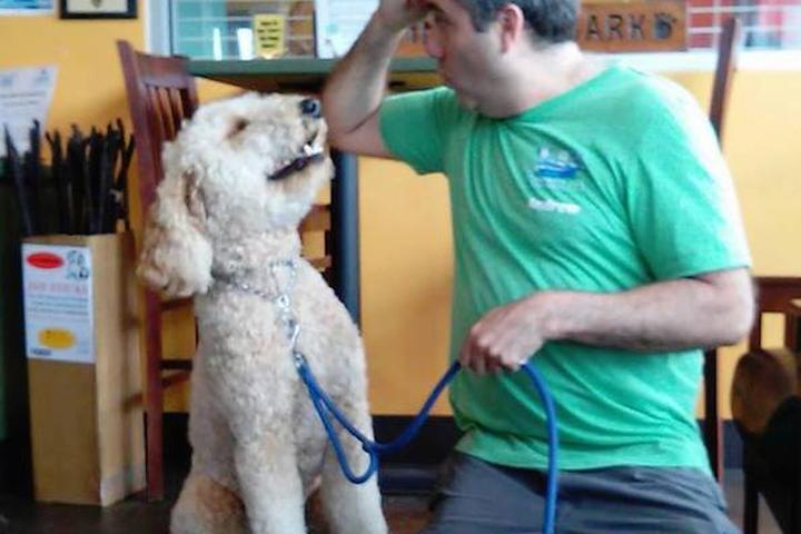 Pet Friendly Community Bark Dog Wash & Coffee Bar