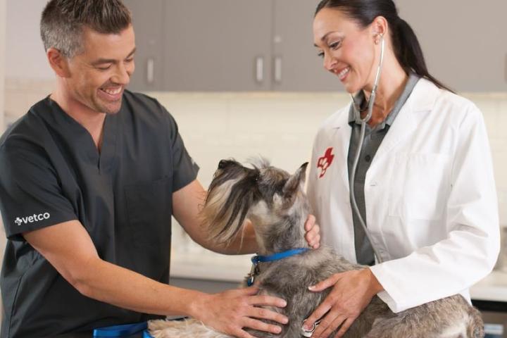 Pet Friendly Vetco Vaccination Clinics