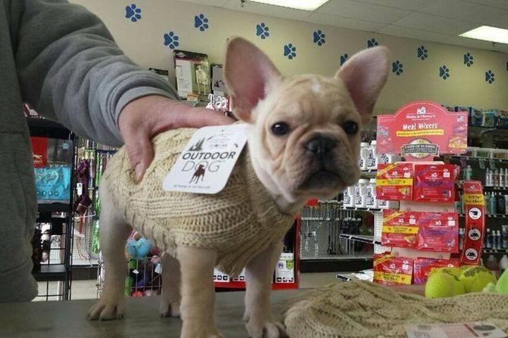 Pet Friendly J-B Pet Supplies