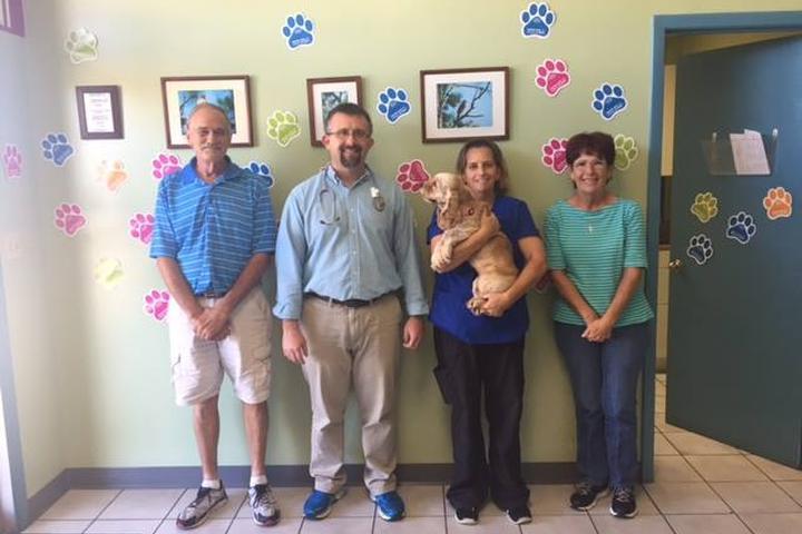 Pet Friendly Englewood Animal Hospital