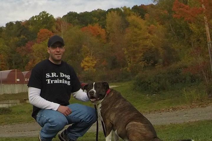 Pet Friendly S.R. Dog Training LLC