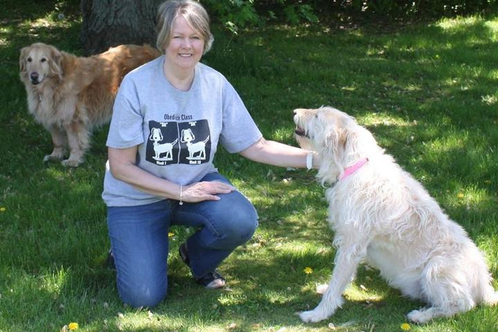 Pet Friendly XtraMile Dog Walking & Pet Sitting