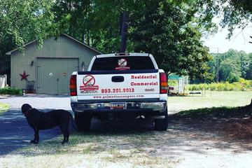 Pet Friendly Palmetto Scoopers