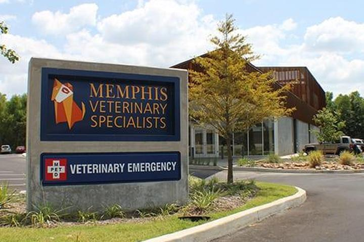 Pet Friendly Memphis Veterinary Specialists
