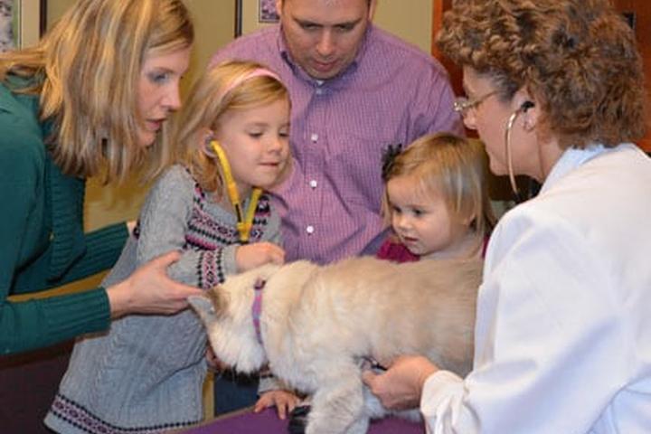 Pet Friendly Caring Hearts Animal Hospital