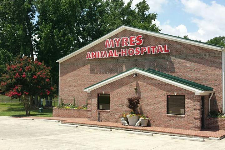 Pet Friendly Myres Animal Hospital
