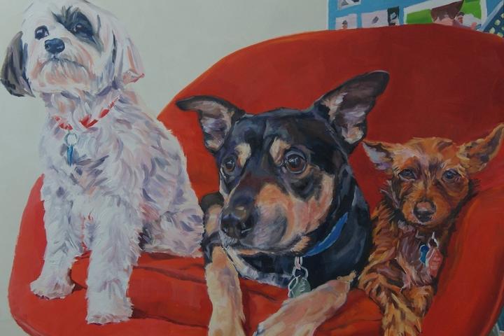 Pet Friendly Nancy Spielman Portraits