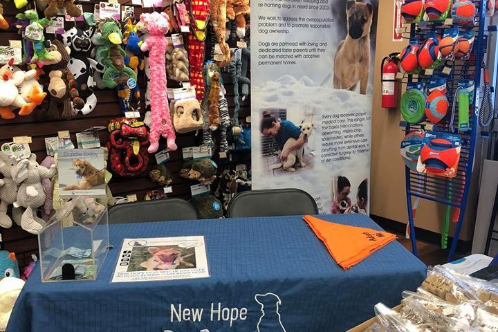 Pet Friendly New Hope Dog Rescue