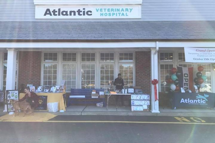 Pet Friendly Atlantic Veterinary Hospital