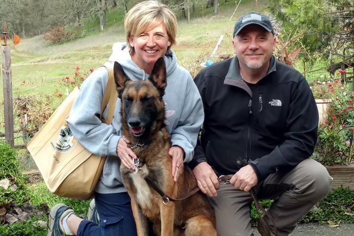 Pet Friendly Bay Area German Shepherd Rescue