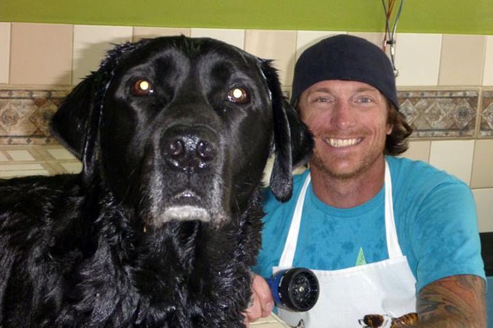 Pet Friendly Noah's Natural Pet Market