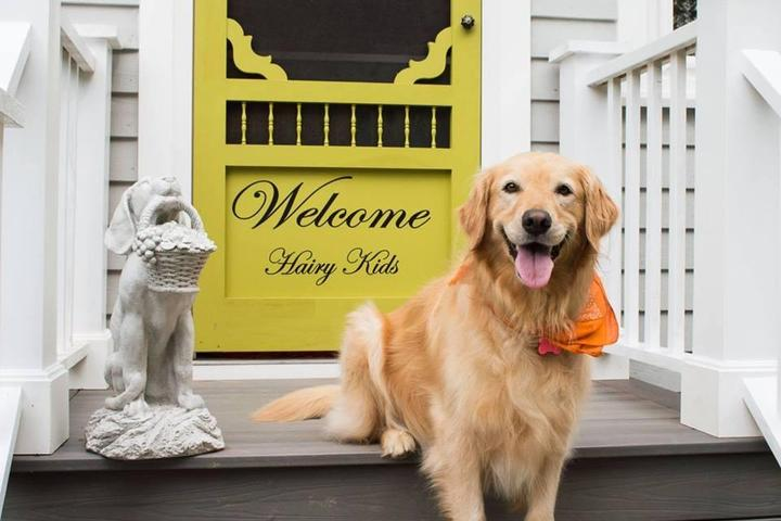 Pet Friendly The Hairy Kids Inn