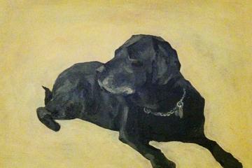 Pet Friendly the handsome hound
