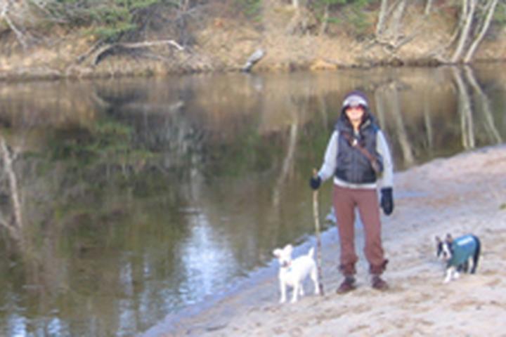 Pet Friendly Paws 2 Go Dog Walking & Pet Sitting Services