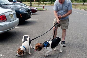 Pet Friendly Pet Care by Susan