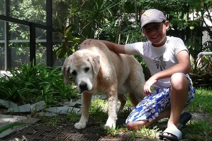 Pet Friendly Angel Care Pet Sitting & Services