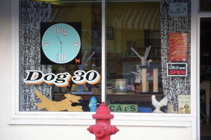 Pet Friendly Dog 30