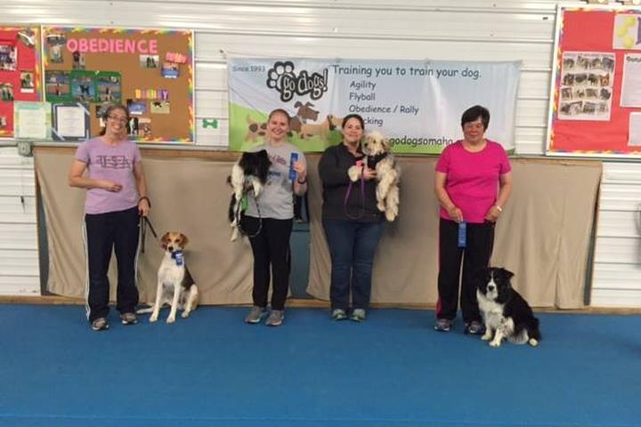 Pet Friendly Go Dogs, Inc.