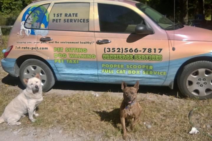 Pet Friendly 1st Rate Pet Services