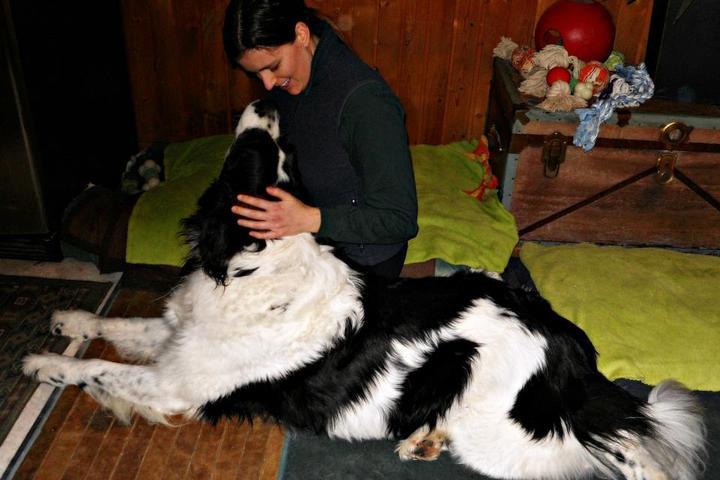 Pet Friendly Fur: Mind, Body & Soul