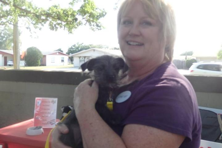 Pet Friendly Chase'n Tails Pet Care, LLC
