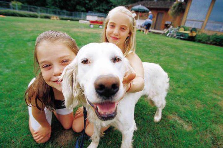 Pet Friendly Clevens K-9 Scoop