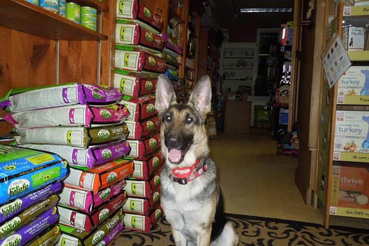 Pet Friendly The Pawprint Market