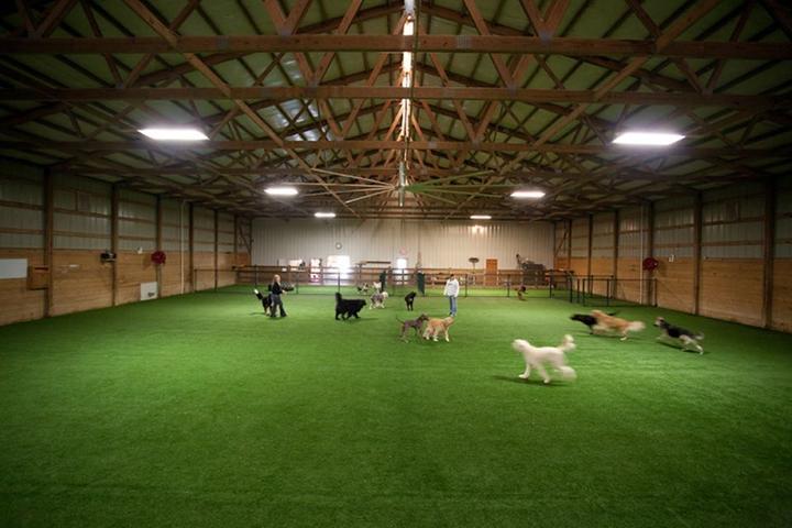 Pet Friendly The Pet Ranch Boarding Kennel