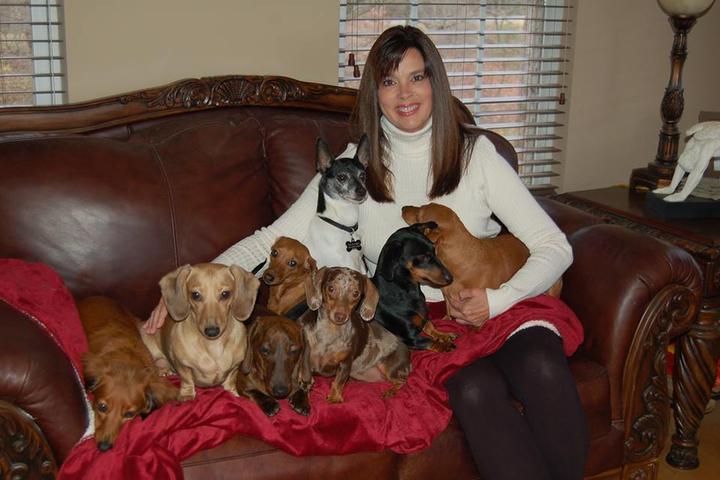 Pet Friendly Rocky Top Pet Services