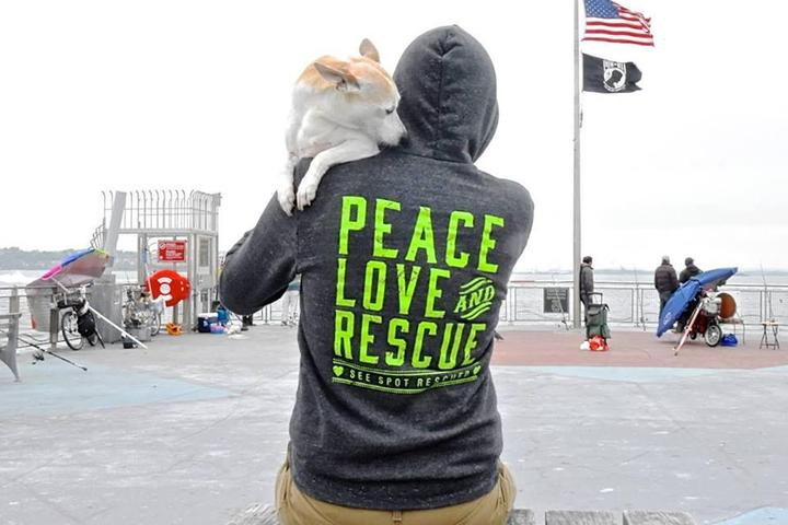 Pet Friendly Spot is Green! Pet Services!